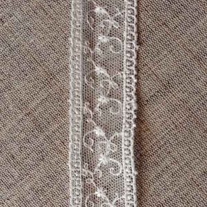Embroidered tulle lace with double edge (25mm)
