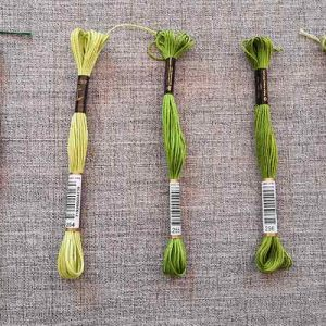 Anchor Stranded Cotton, 8m skein (greens #1)